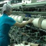 Барнаульский меланжевый комбинат представит текстильную и швейную продукцию на международной выставке